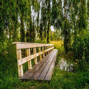 Brücke im Park (Suche nach der Natur) von Jeffrey Steenbergen
