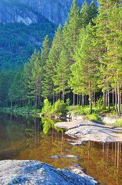 Wald (vertikal) von Rogier Vermeulen