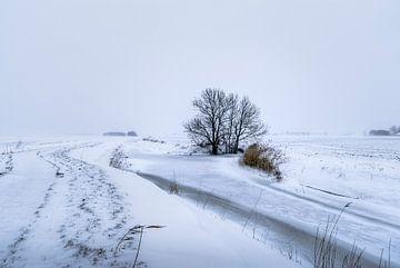 Winter op het Hogeland von Marnefoto .nl