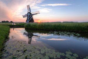 Windmühle 't Witte Lam bei Sonnenuntergang
