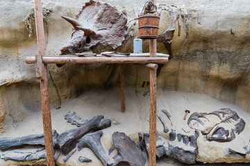 Jurassic park ... Een groot avontuur aan de muur van Hans Brinkel