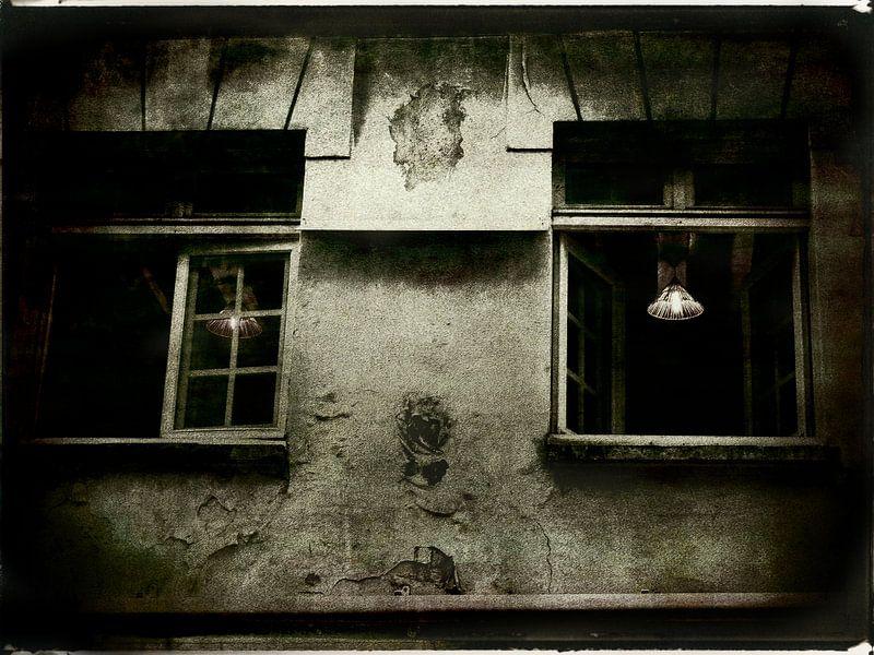Fenêtre sur cour van sophie etchart