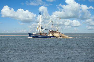 Krabbenkutter auf der Nordsee von Peter Eckert