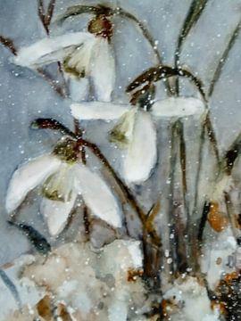 Sneeuwklokjes van Christine Nöhmeier