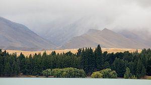 De kust van het Tekapo meer, Nieuw Zeeland