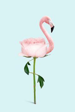 Fleur de flamant sur Jonas Loose