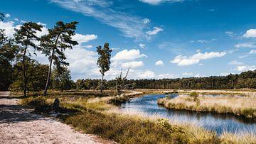 Schöne Landschaft, Hatertse und Overasseltse Vennen von Rob van Dongen