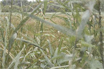Landschap 21 sur Miriam Duda