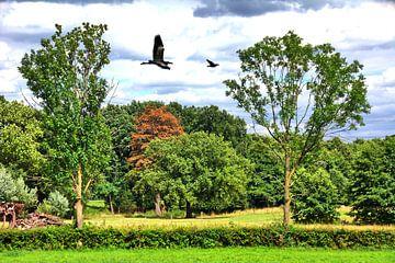 Bäume 4 von Edgar Schermaul