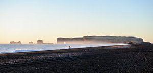 Iceland's south coast