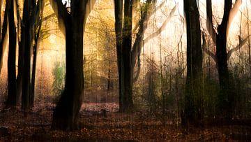 Herfstlandschap von Aukje Ploeg