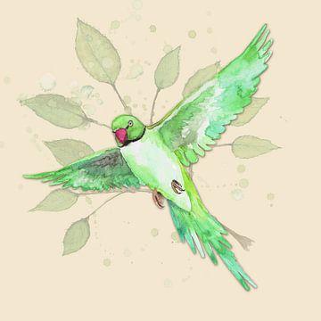 Fliegender Halsbandsittich von Bianca Wisseloo