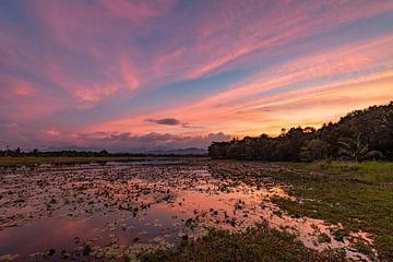 Sonnenuntergang am Wasgamuwa-See von Lex van Doorn
