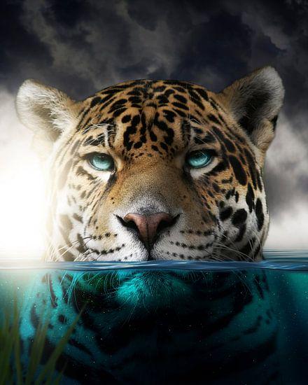 Een luipaard in het water