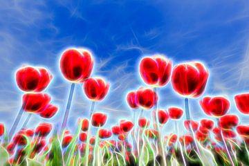 Lichteffekte in Feld mit roten Tulpen gegen den blauen Himmel im Frühjahr von Ben Schonewille
