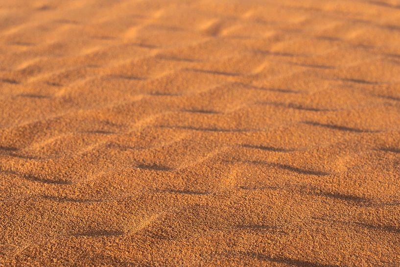 De schoonheid van de woestijn van Jeroen Kleiberg
