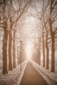 Nostalgisch laantje met besneeuwde bomen van Connie Posthuma
