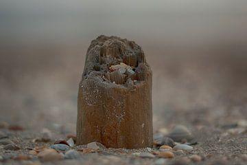 Paaltje in het zand von Albert van der Spaan