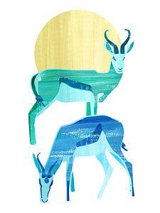 Antilopes in de zon