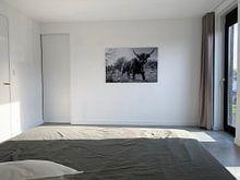 Klantfoto: Schotse Hooglander zwart/wit van Frank Slaghuis