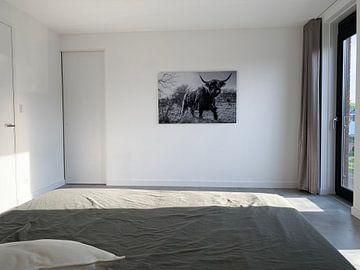 Kundenfoto: Schotse Hooglander zwart/wit von Frank Slaghuis