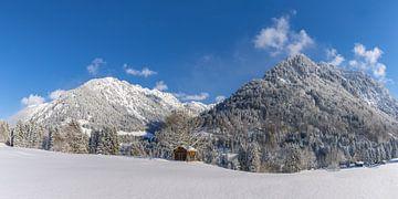 Winter in the Allgäu van