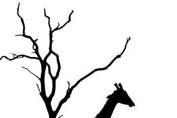 Giraffe silhouet van Marijn Heuts