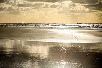 Reflectie op het strand van Cora Unk