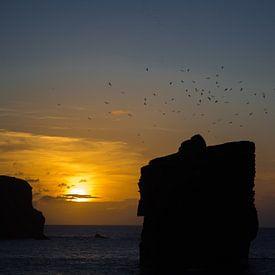 Azoren sunset aan de zee met meeuwen van Aaldrik Bakker