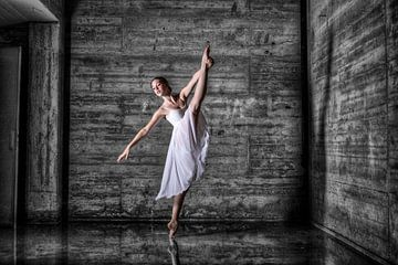 Ballerina van Bob Karman