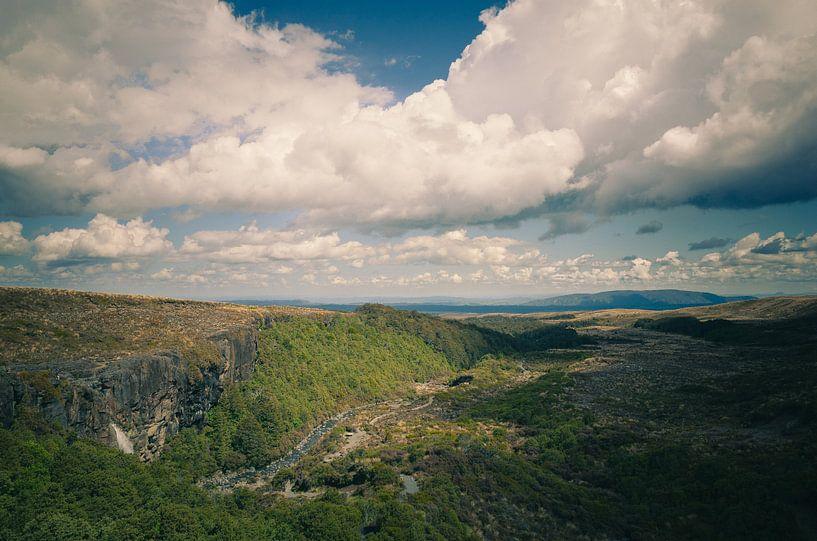 Taranaki Falls, Nieuw Zeeland van Jasper van der Meij