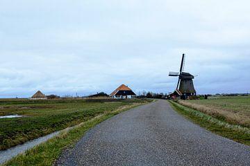 Paysage de fermiers, Pettemerpolder Hollande du Nord sur Jeroen van Esseveldt