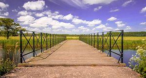 A bridge van Fred Bekema
