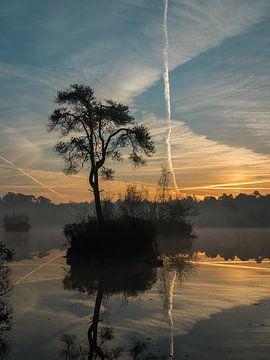 Magischer Morgen I von Diane van Veen