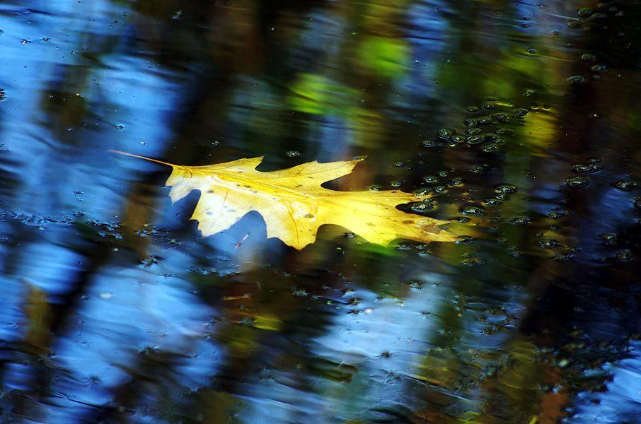 Herfst stroming van Mike Bing