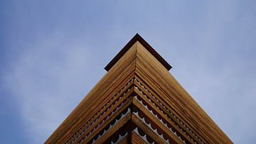 De uitkijktoren op de Hulzenberg van Montferland Fotografie