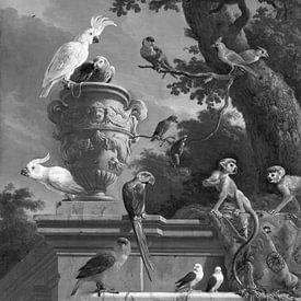 De menagerie in zwart wit , Melchior d'Hondecoeter van Marieke de Koning