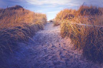 De weg naar het strand van Florian Kunde