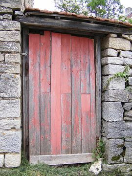 Franse deur van Mirjam van Ginkel