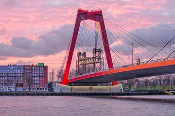 Rotterdam, de Willembrug en de Hef