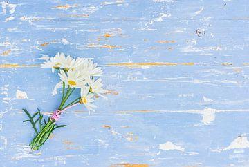 Romantischer Blumenstrauß aus Gänseblümchen und Kamille auf blauem Holzhintergrund von Alex Winter