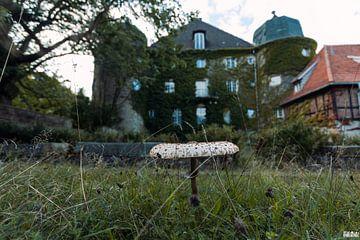 Aanzicht van een verlaten kasteel. van Het Onbekende