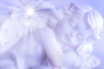 Engel von Dagmar Marina
