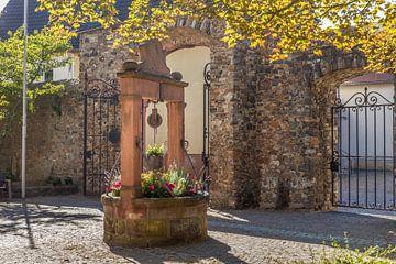 Brunnen im Hof von Schloss Ober-Mörlen van Christian Müringer