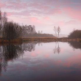 Winterse ochtend van Marijn Heuts