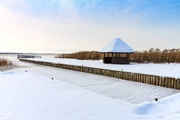 Hafen von Born am Bodden im Winter von Rico Ködder