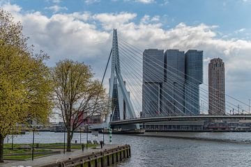 Frühling in Rotterdam von Teun Ruijters
