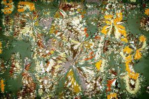 Flicerya von GOOR abstracten