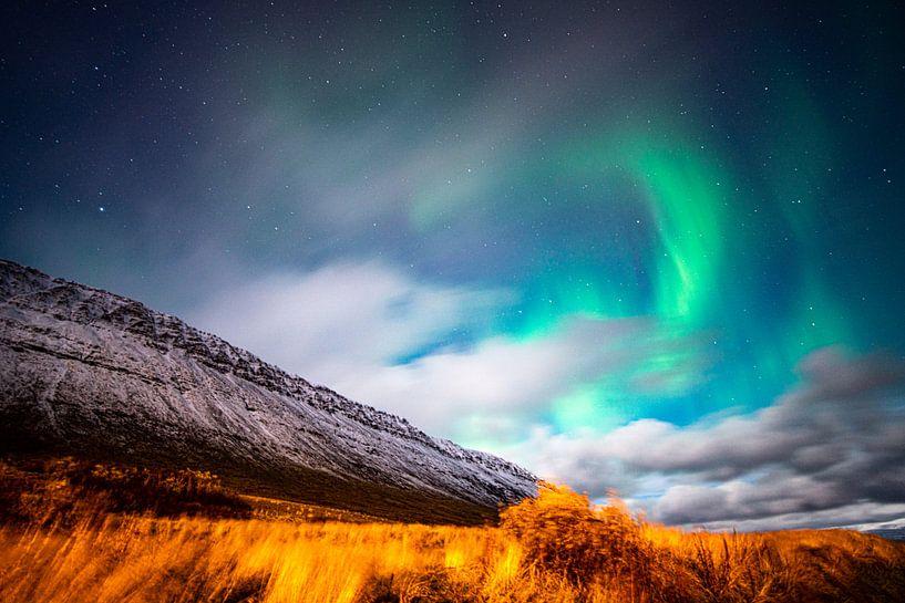 Grün-purpurne Nordlichter bei Mondschein in Island von John Ozguc
