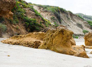 Escargot sur la plage sur Erna Kampman
